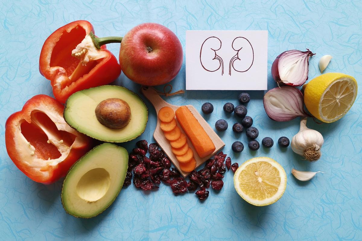 O papel da alimentação no bom funcionamento dos rins