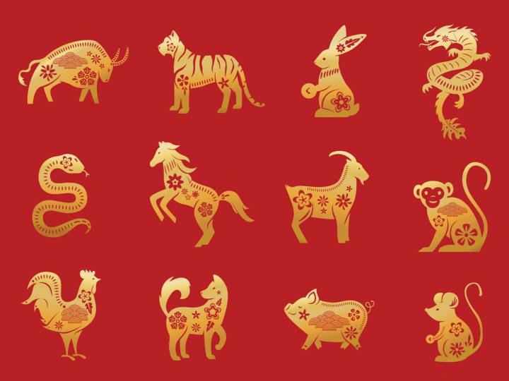 Horóscopo Chinês: encontre seu signo, seu ascendente e o elemento