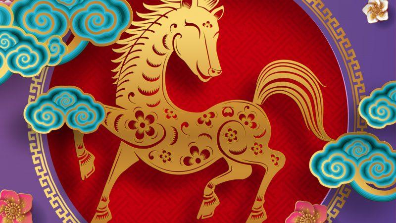 Mês do Cavalo: confira as tendências para junho